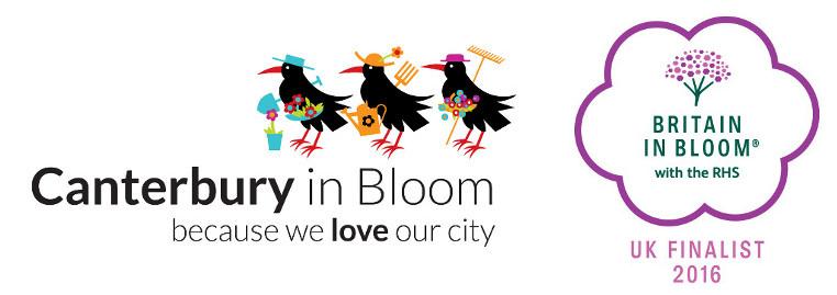 Bloom-Banner